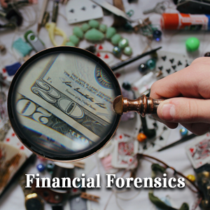 College Station Forensic Accounting